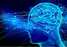 脳の伝達物質